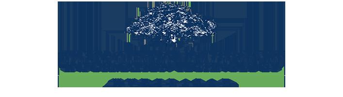 iiit hyderabad logo bcd trans